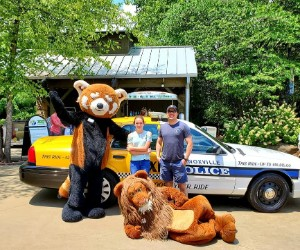Knoxville DUI car with Zoo characters cropped 300x250