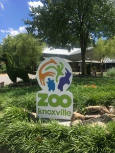 Knoxville Zoo 500x