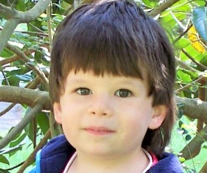 Brady by tree day before he died cropped web version